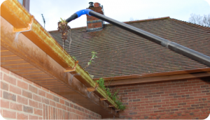 Gutter-cleaning-main